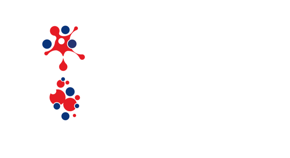 B2B Logo with margin.png