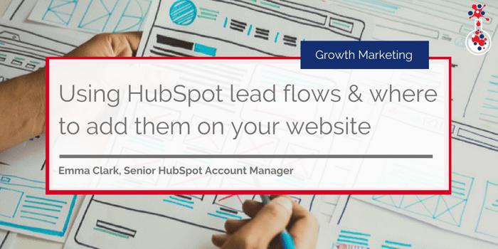 HubSpot lead flows 1